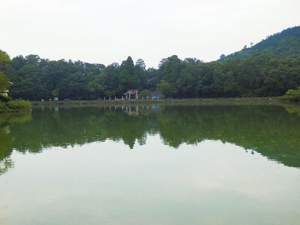 対岸に三嶋神社の鳥居が見えるグリーンパーク山東の三島池