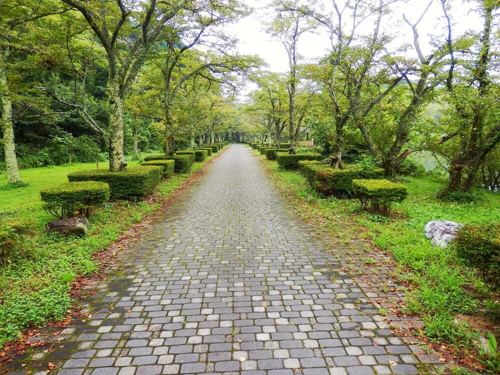 グリーンパーク山東の三島池沿いの遊歩道