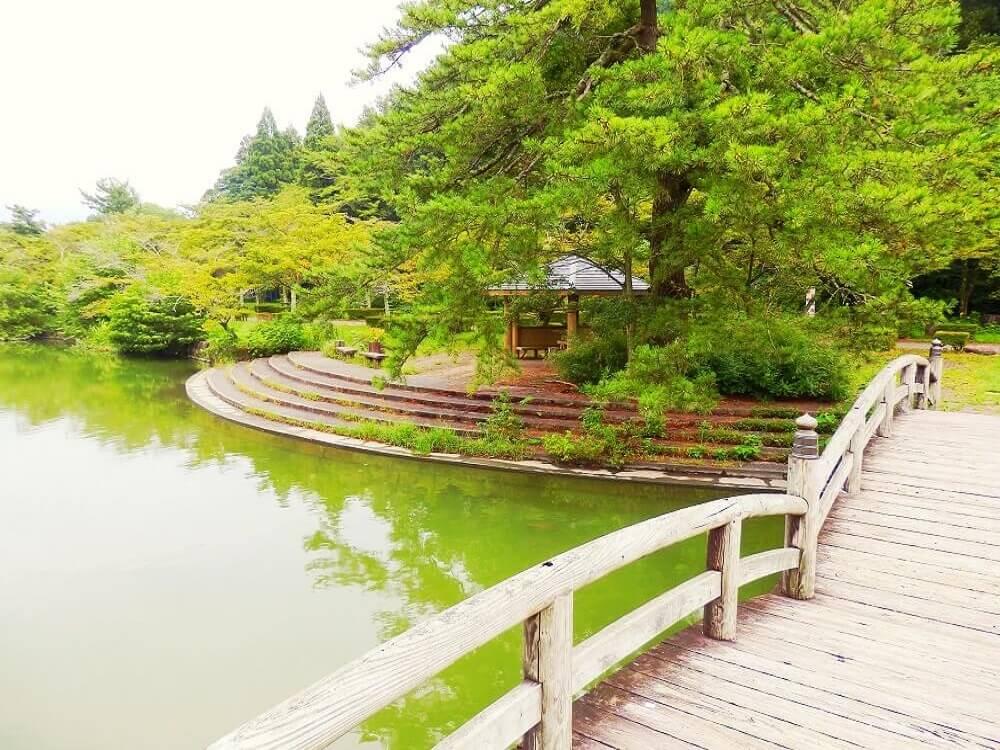 グリーンパーク山東の三島池の橋の上から見た踊り場