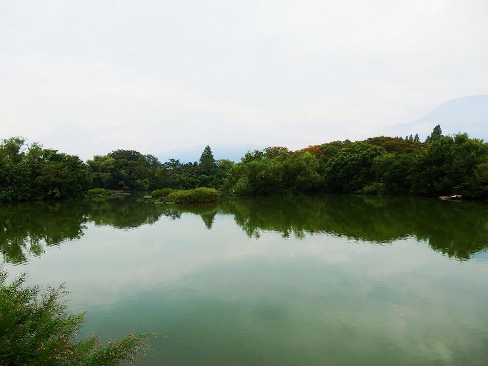 グリーンパーク山東の三島池の水面
