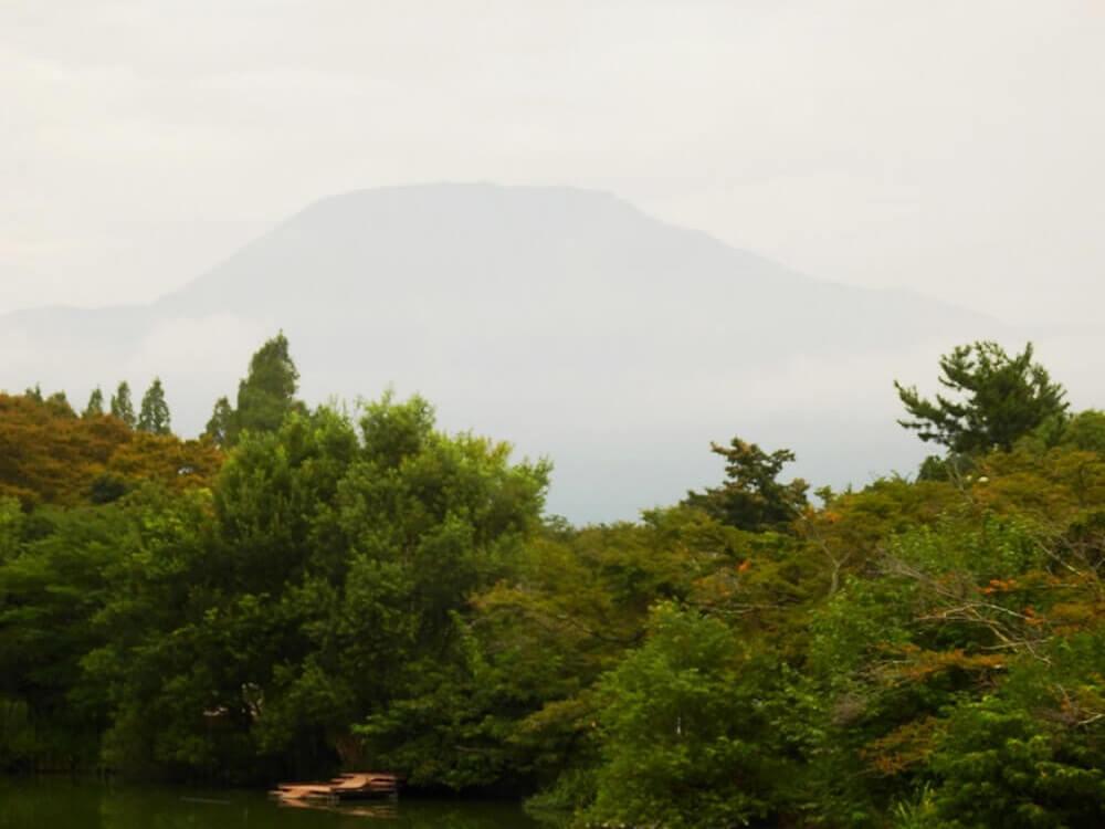 グリーンパーク山東の三島池から見た伊吹山