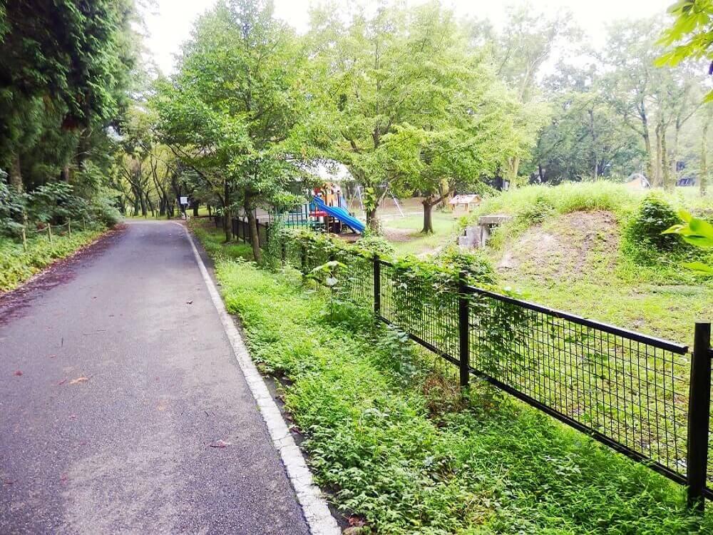 グリーンパーク山東のキャンプサイト横の並木道
