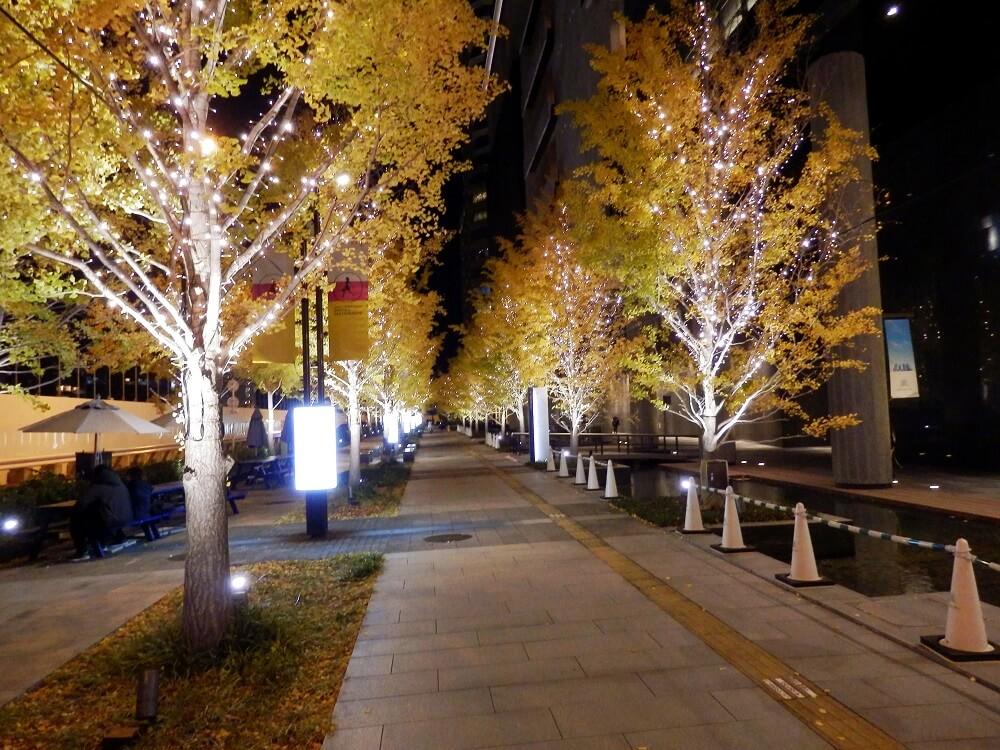 グランフロント大阪北館前の遊歩道のクリスマスイルミネーション