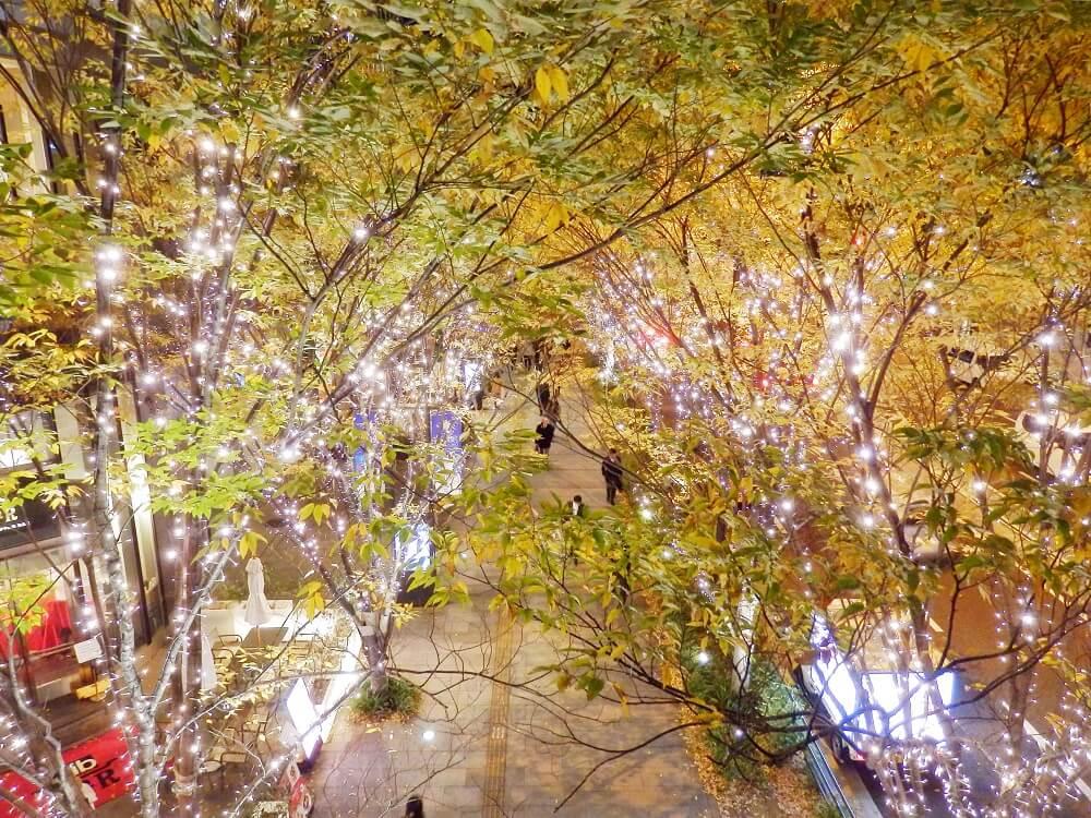 大阪ステーションシティ5階のエントランス下の路上のクリスマスイルミネーション