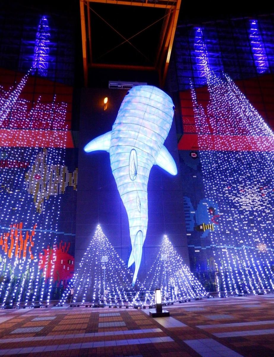 海遊館のジンベイザメのクリスマスイルミネーション