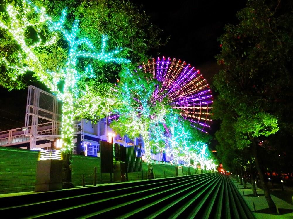 海遊館の樹木のクリスマスイルミネーションと夜の観覧車