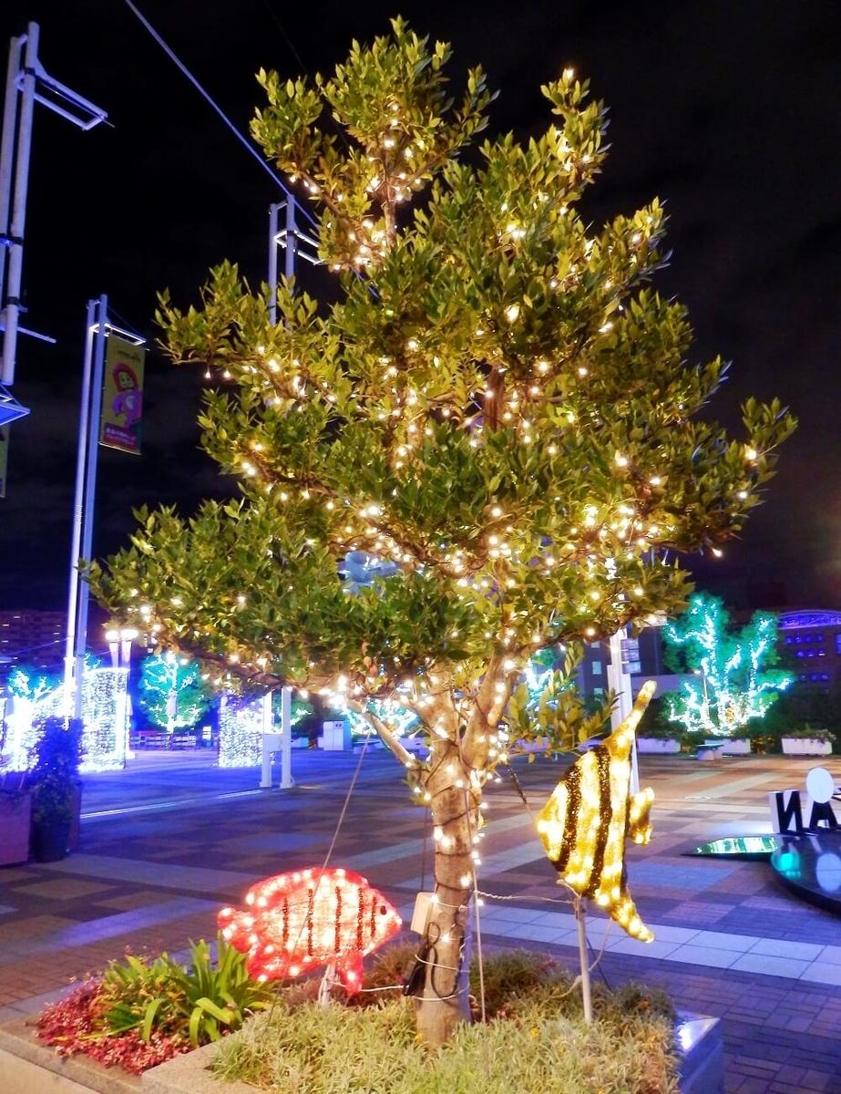 海遊館のクリスマスツリーと魚をコラボレーションしたクリスマスイルミネーションオブジェ