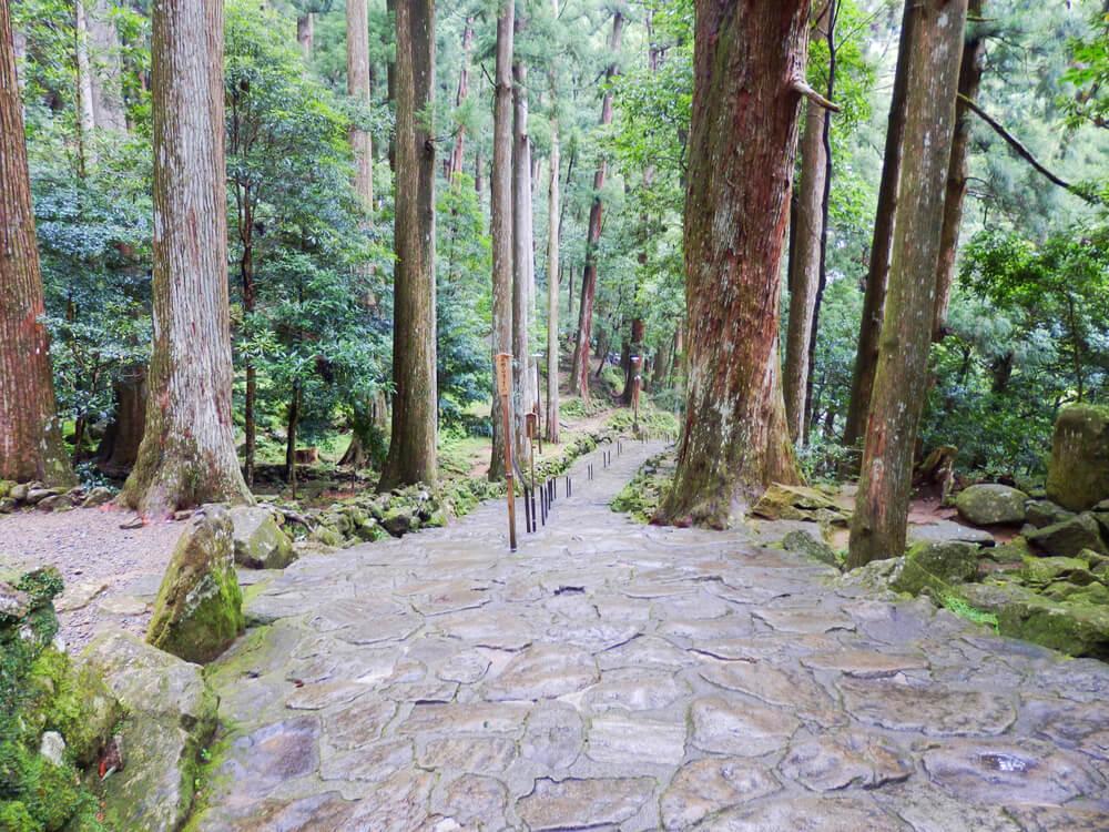那智の滝へと向かう参道の階段