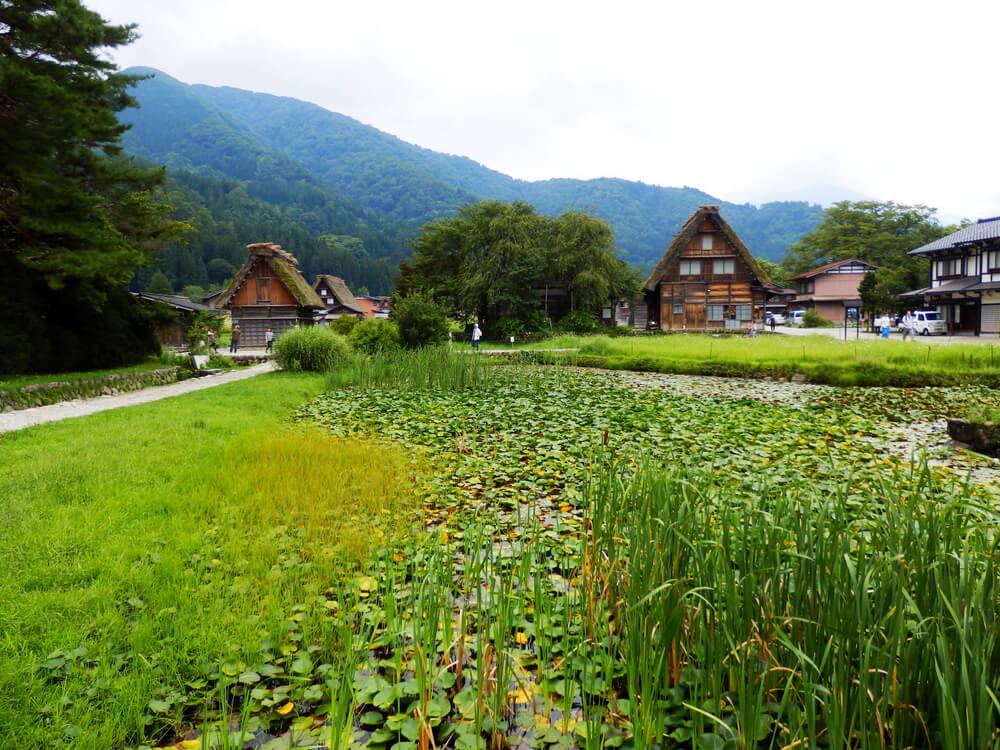 白川郷合掌村のかやぶき屋根の建造物と水辺の風景