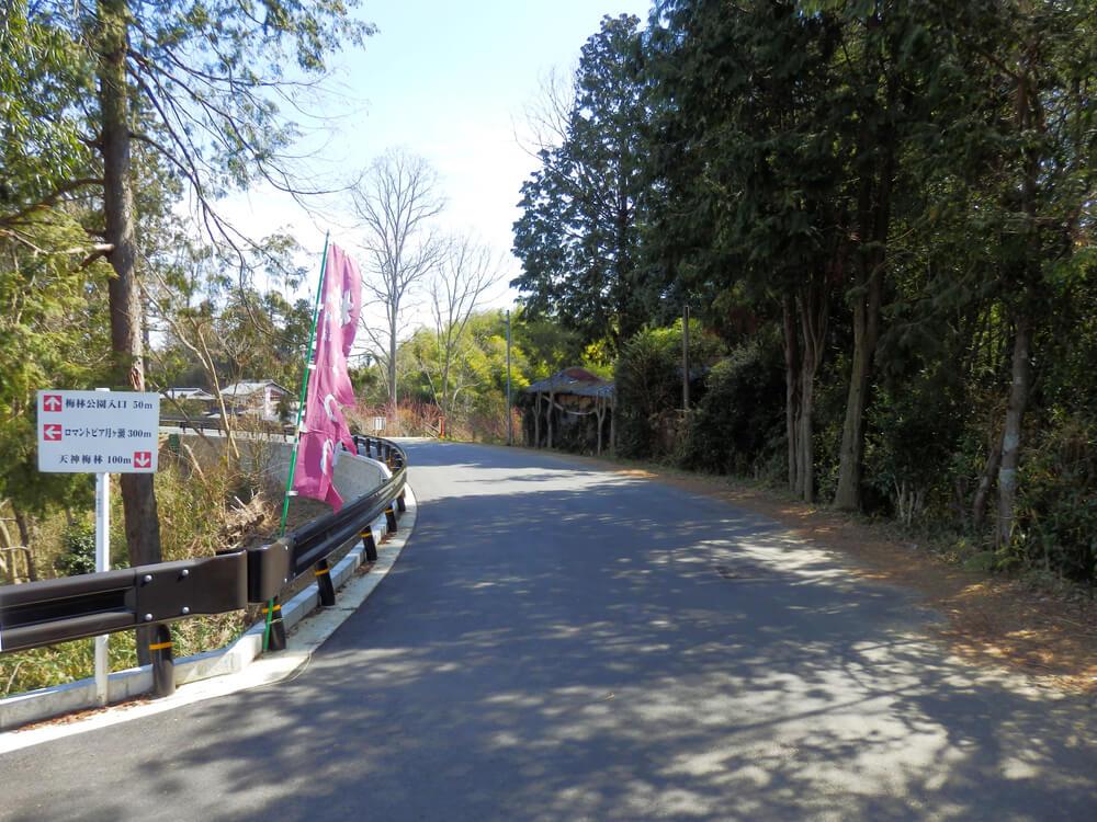 梅林公園入口50m、ロマントピア月ヶ瀬300m、天神梅林100mと書かれた立て札の画像