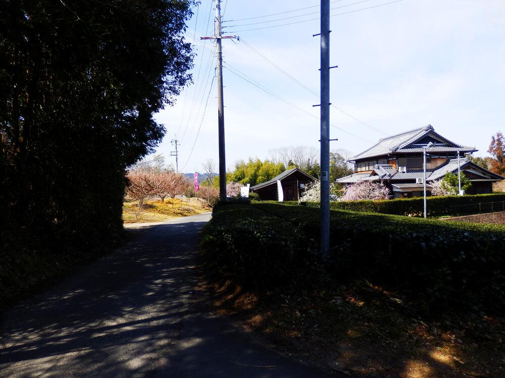 月ヶ瀬梅渓の真福寺への遊歩道