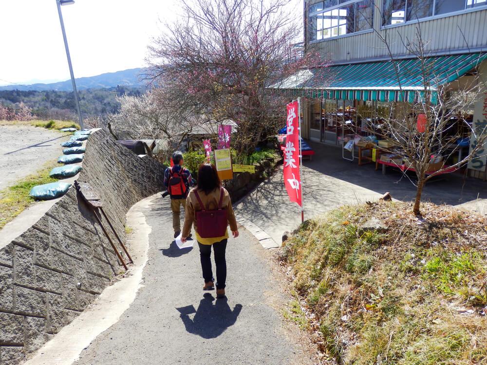 月ヶ瀬の真福寺境内から一目八景への参道