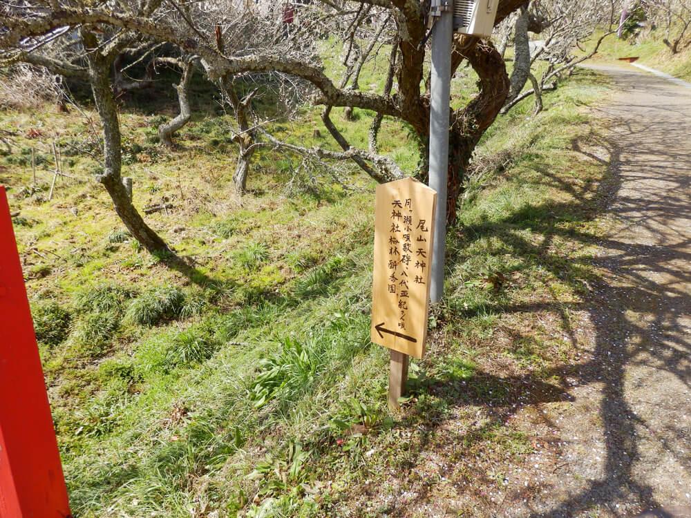 品種園から尾山天神神社への参道の途中の赤い橋手前の立て札