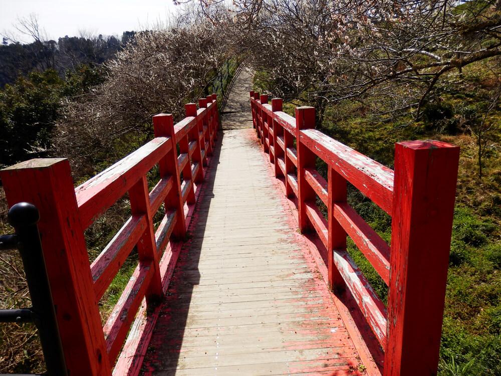 品種園から尾山天神神社への参道の途中の赤い橋