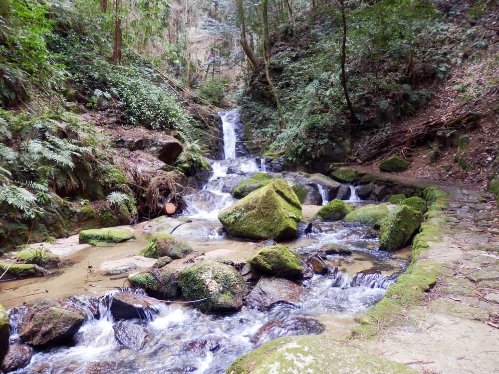 月ヶ瀬の龍王の滝