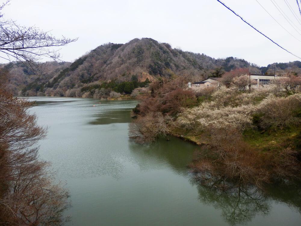 月ヶ瀬の滝谷川にかかる橋の上から名張川(五月川)方面を望む