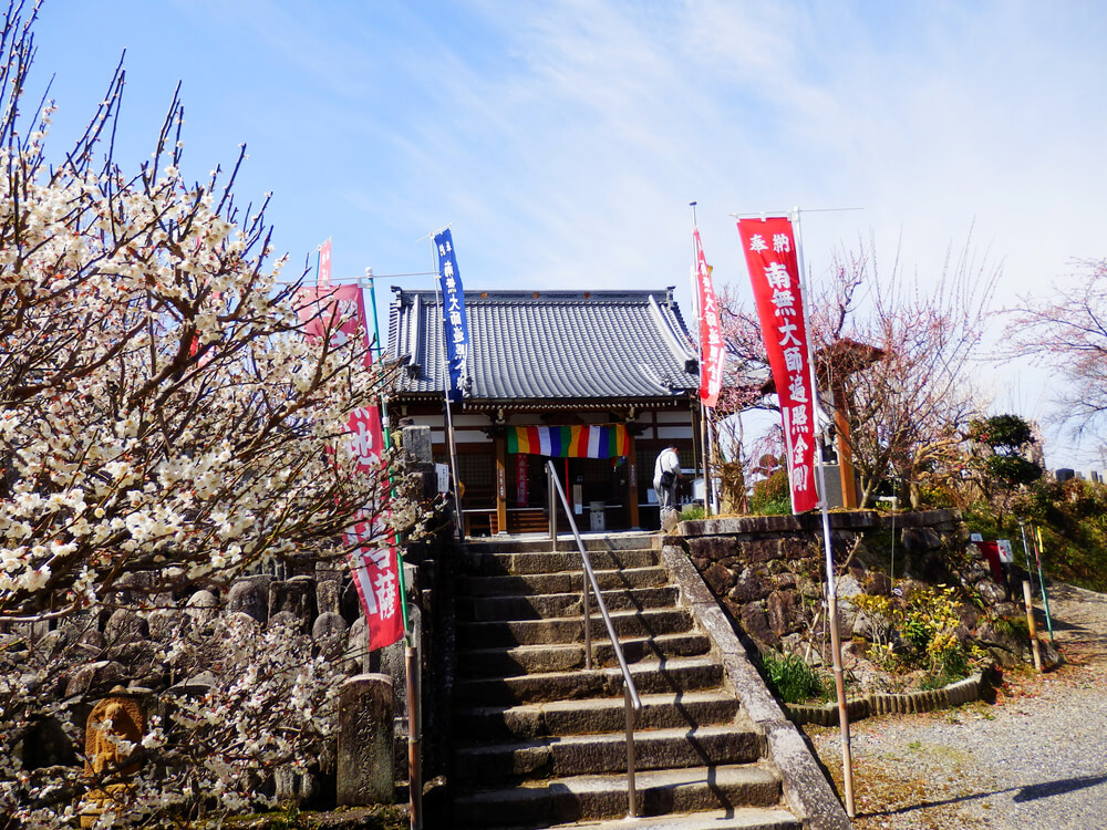 階段の上の月ヶ瀬 真福寺の本堂