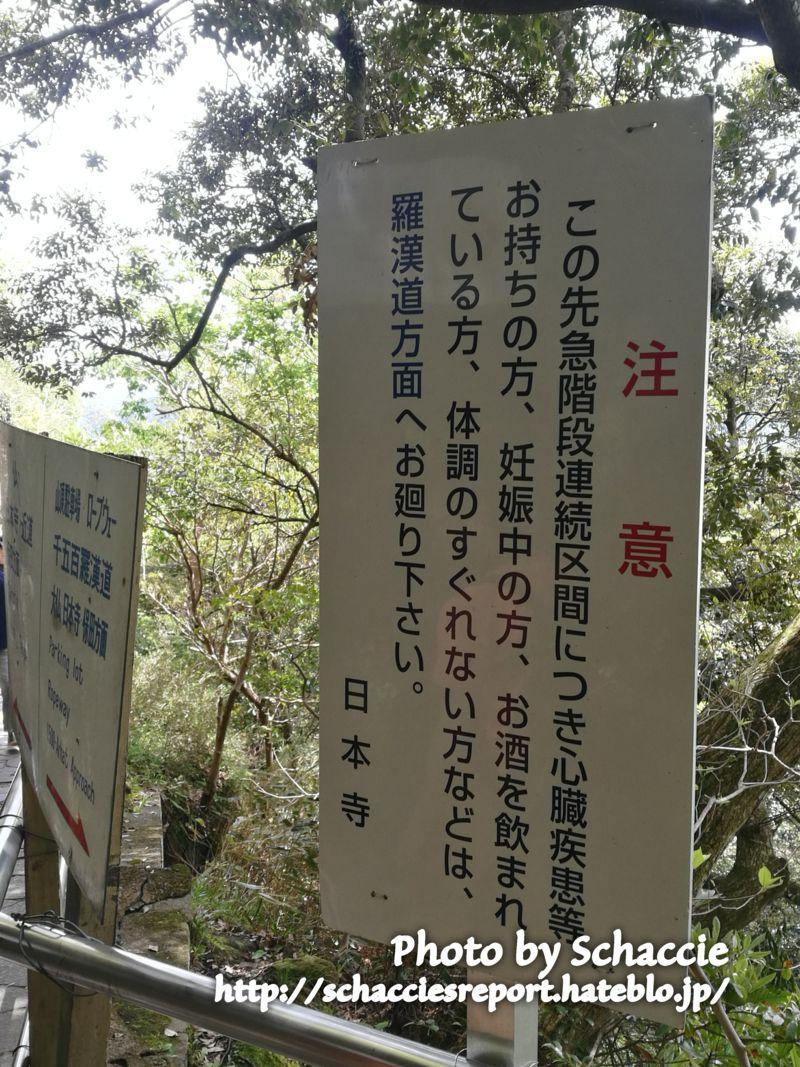 鋸山-登山道2