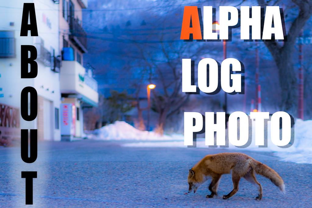 alpha-log-photoについて
