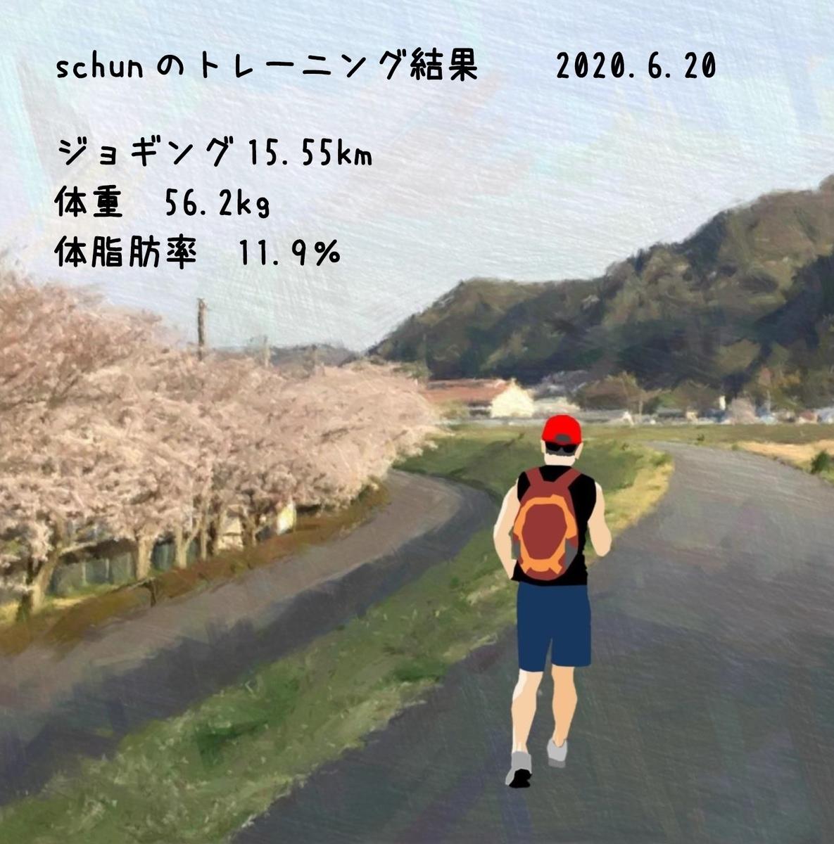 f:id:schunchi2007:20200621181945j:plain