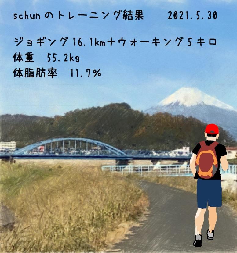 f:id:schunchi2007:20210530195237j:plain