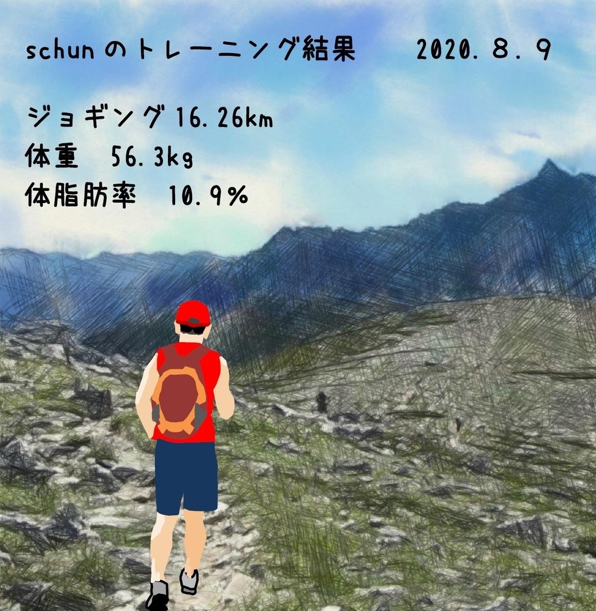 f:id:schunchi2007:20210809045254j:plain