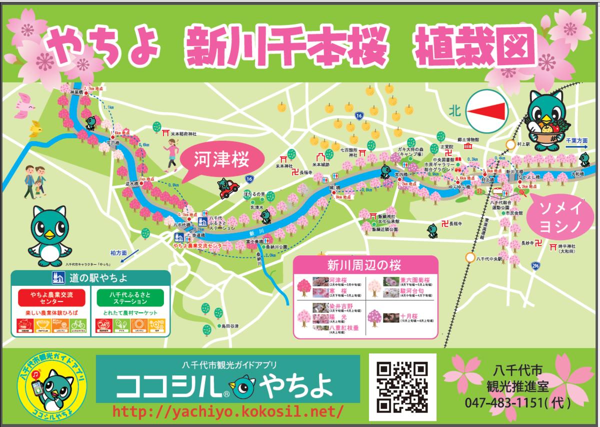新川千本桜 植栽図