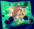 チョコミントサークル