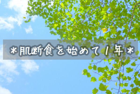 f:id:sd_marisuke:20170429113728j:plain