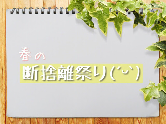 f:id:sd_marisuke:20170512102904j:plain