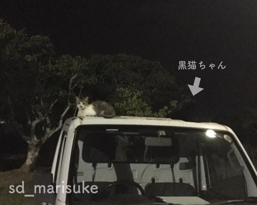 f:id:sd_marisuke:20170905162703j:plain