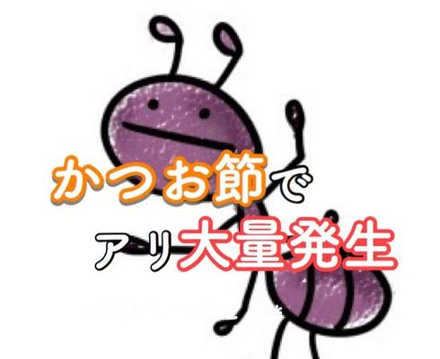 f:id:sd_marisuke:20171013100244j:plain