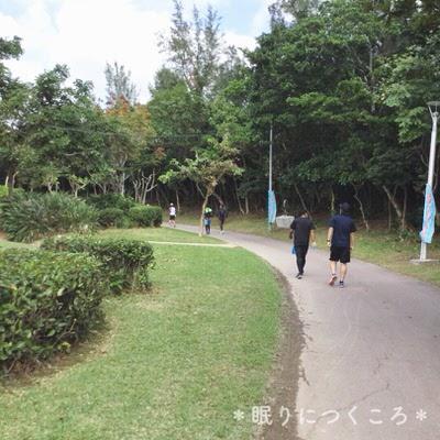 f:id:sd_marisuke:20171122094047j:plain