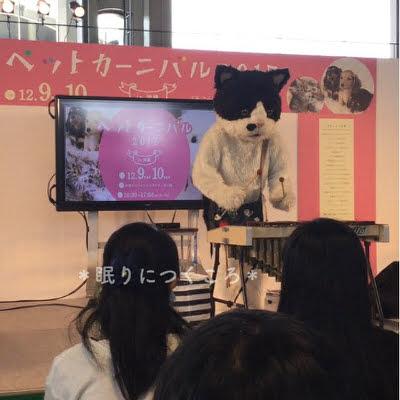 f:id:sd_marisuke:20171211100434j:plain