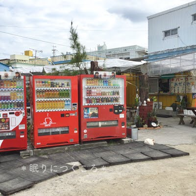 奥武島大城てんぷら店横にある自動販売機とパーラー