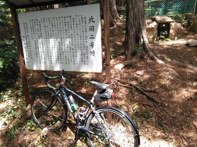 f:id:sdayamayuki:20210504135608j:image