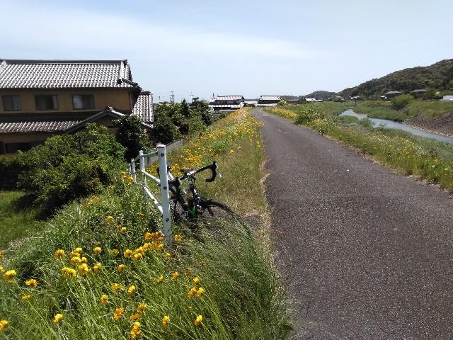 f:id:sdayamayuki:20210510195656j:image
