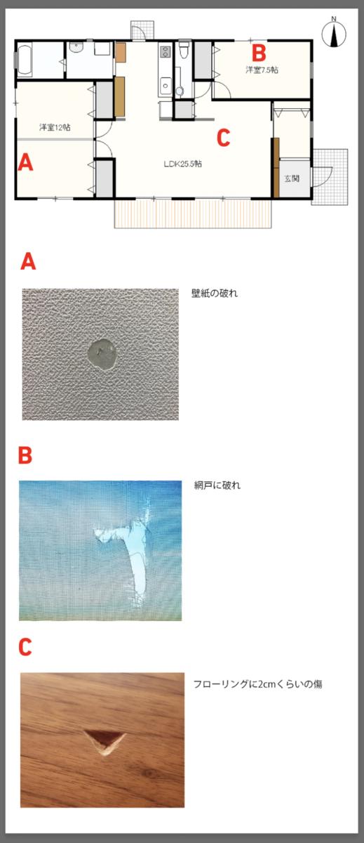 f:id:sdk-quadra:20210113083619p:plain