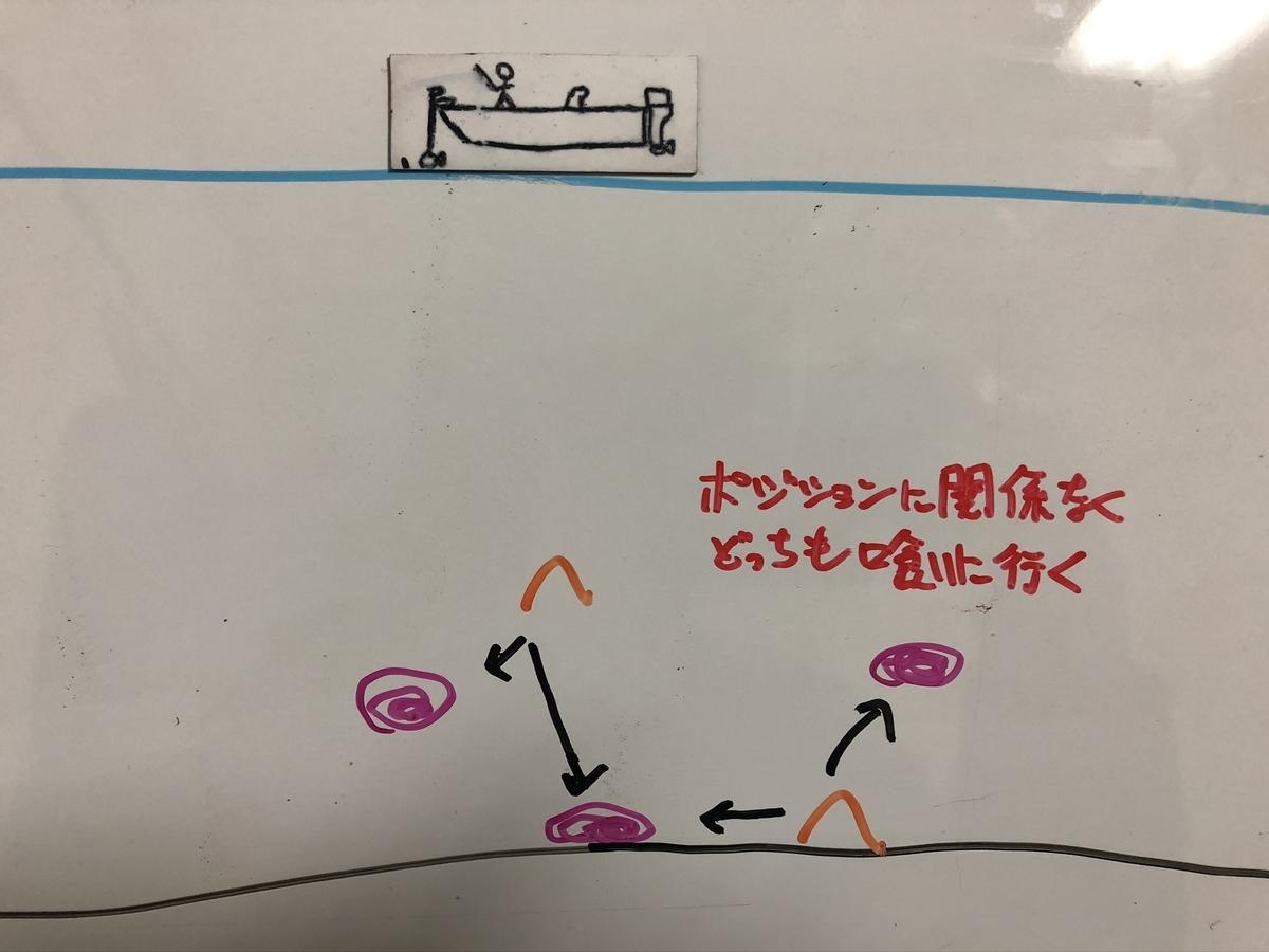 f:id:seabass-advantage:20200214172350j:plain