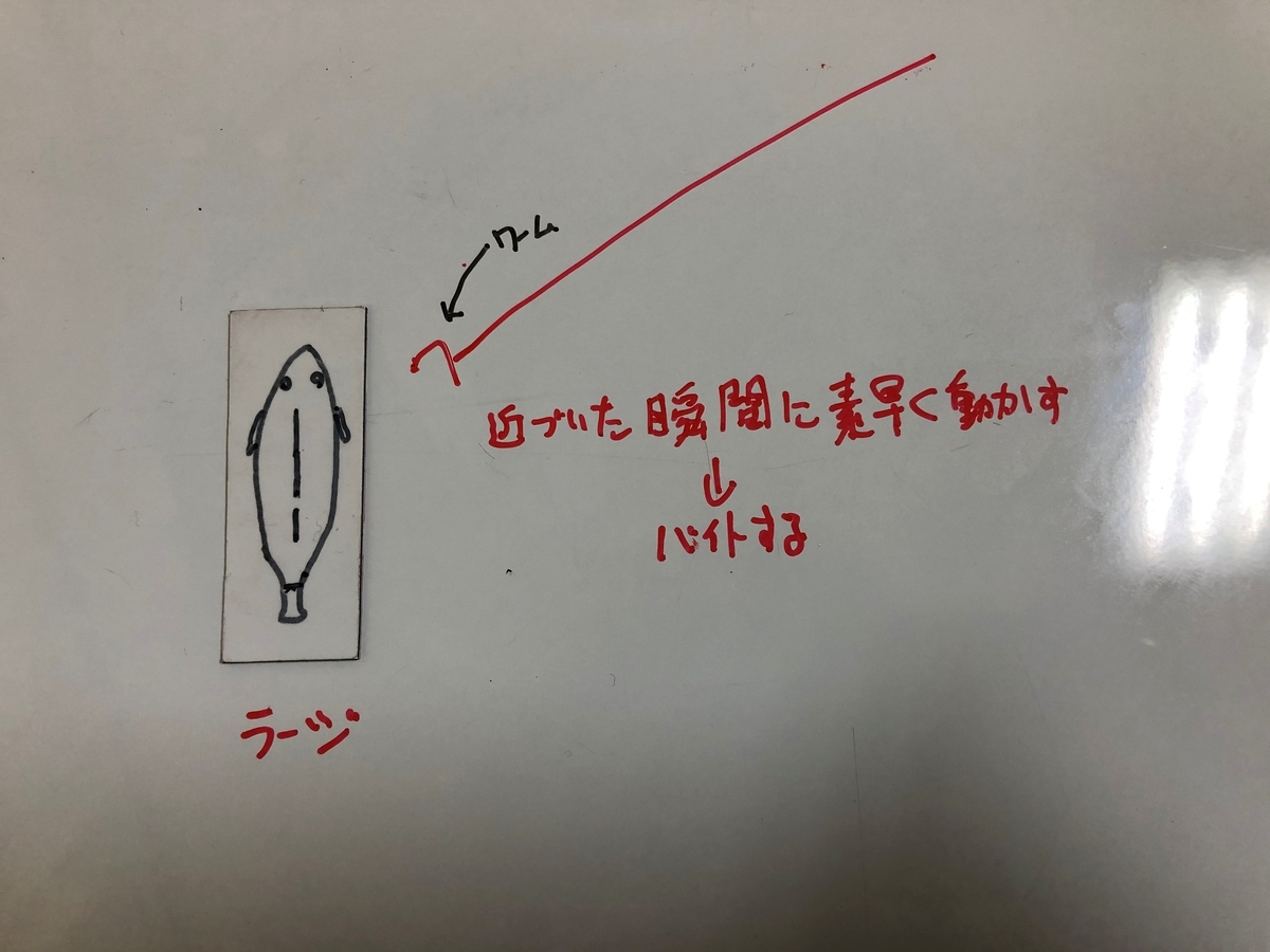 f:id:seabass-advantage:20200429175034j:plain