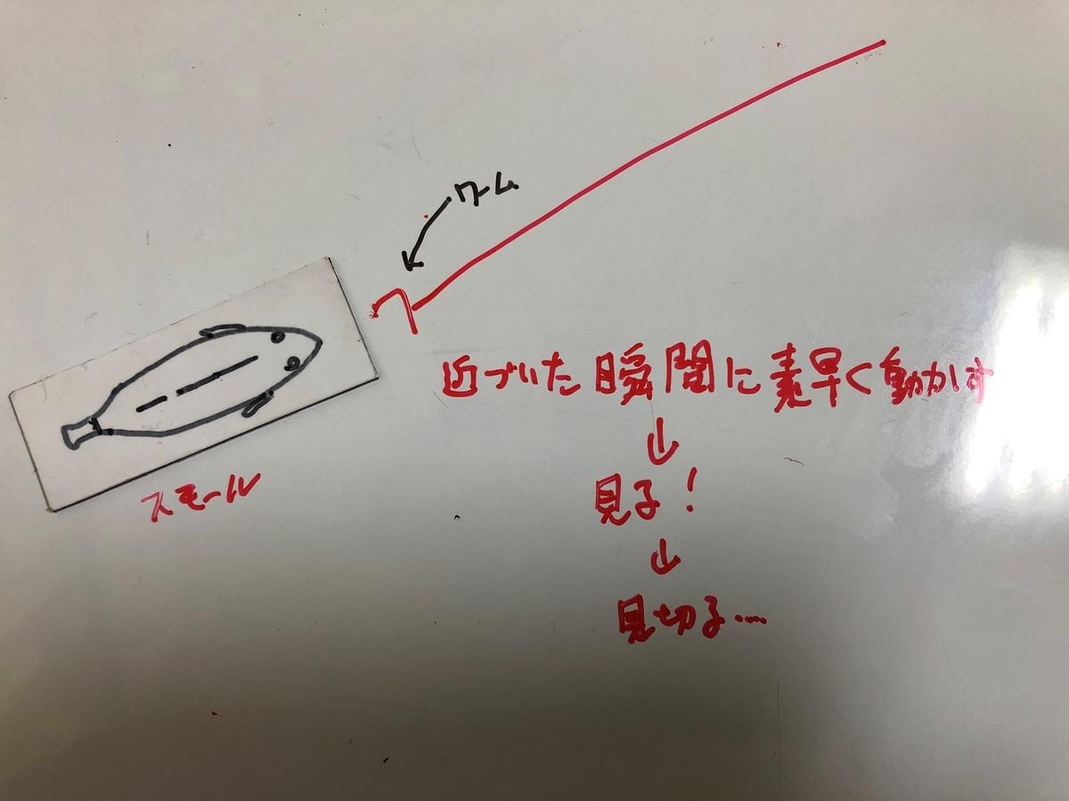 f:id:seabass-advantage:20200429175041j:plain