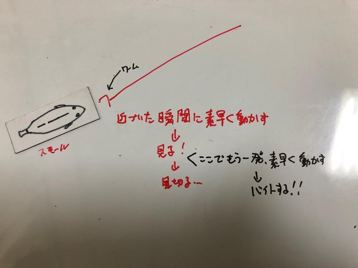 f:id:seabass-advantage:20200429175047j:plain