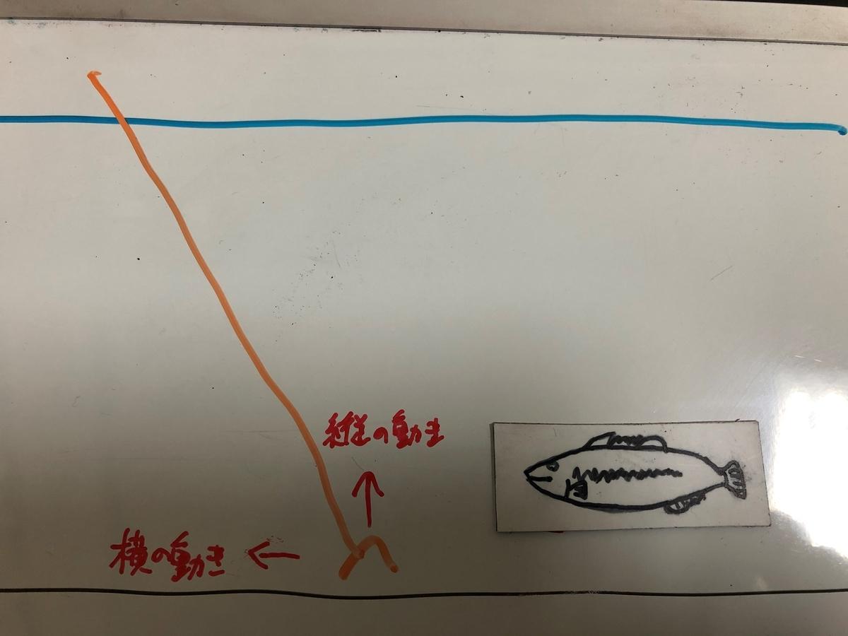 f:id:seabass-advantage:20200429180246j:plain