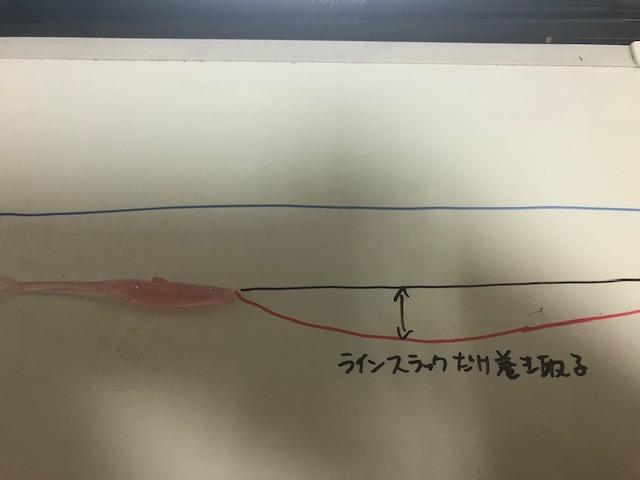 f:id:seabass-advantage:20200514213629j:plain