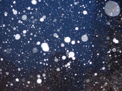 f:id:seasonsgreetings:20200210005726j:plain