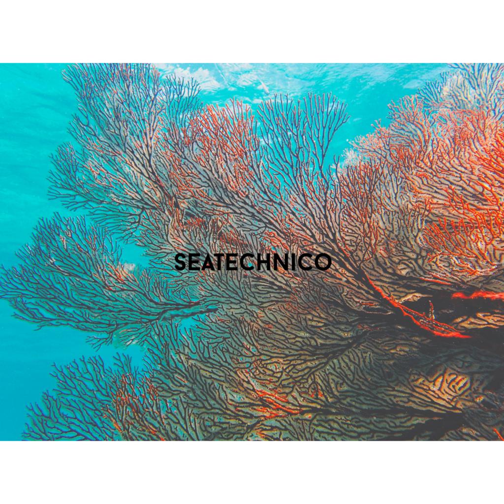 f:id:seatech5:20160702190151j:plain