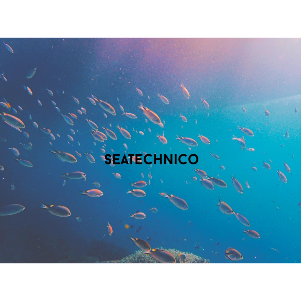f:id:seatech5:20160702190237j:plain