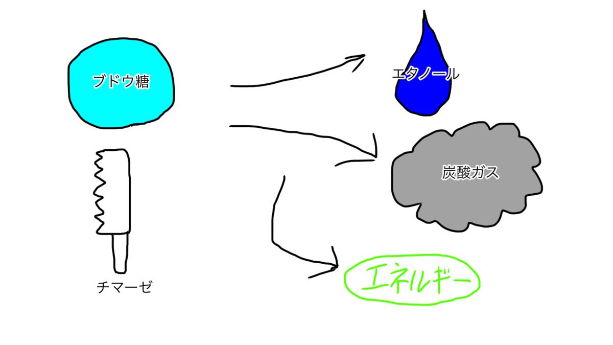 f:id:second_burnout:20210509092929p:plain