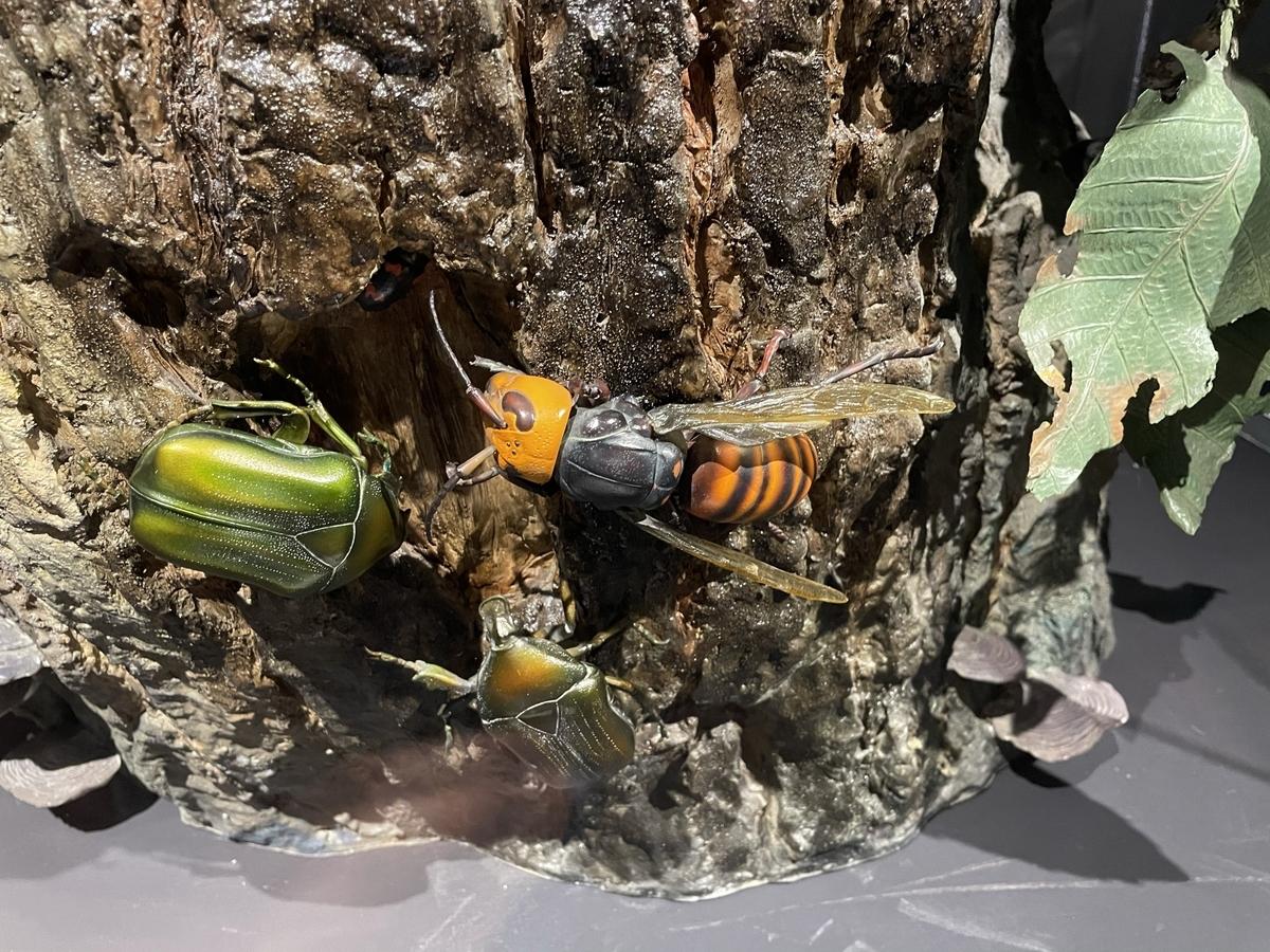 スズメバチのフィギュア