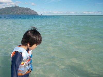 ハワイの「天使の海」シュノーケルツアーにて。